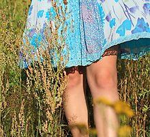 Summer 2 by Malgorzata Larys