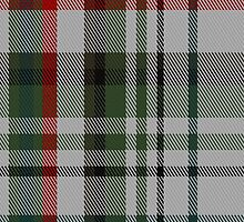 01652 Beckett Beaumont Tartan Fabric Print Iphone Case by Detnecs2013