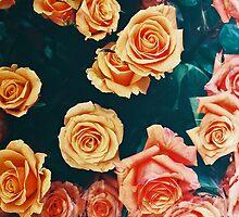 Roses by capnjackk
