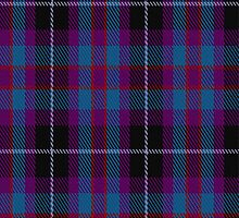 01659 Benreay Medical Centre Tartan Fabric Print Iphone Case by Detnecs2013