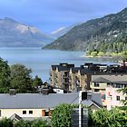 Overlooking Queenstown by Larry Lingard-Davis