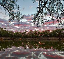 Bushy Bend Sunrise by Mark Cooper