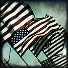 Stars &#x27;n&#x27; Stripes by Trish Mistric