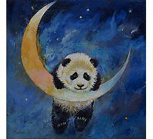 Panda Stars Photographic Print