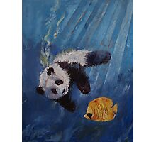 Panda Diver Photographic Print