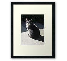 Gentleman Morty Framed Print