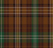 01699 Blaylock Hunting Tartan Fabric Print Iphone Case by Detnecs2013