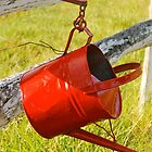 Watering Can Mailbox #2 by Penny Smith