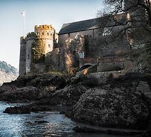 Dartmouth Castle by Michael Carter