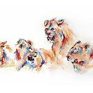 Pride of Samburu by Stephie Butler