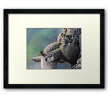 Ganesha with dragonfly Framed Print