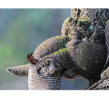 Ganesha with dragonfly Photographic Print