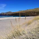 A Hebridean Beach In Early April by BlueMoonRose