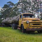 Vintage Truck by Mandy  Harvey