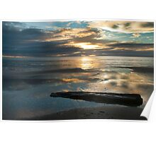 Washed Up - Etty Bay sunrise Poster