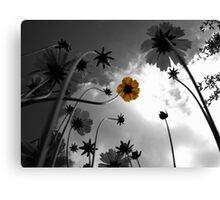 Hope - a photographic print Canvas Print