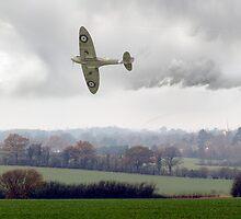 Eagle over England by Gary Eason + Flight Artworks