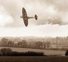 Eagle over England, sepia version by Gary Eason