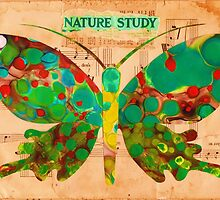 Nature Study by Kathy Panton