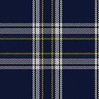01701 Boat of Garten District Tartan Fabric Print Iphone Case by Detnecs2013