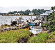 Bush Island III Photographic Print