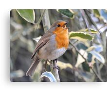 Born to Sing Canvas Print