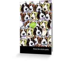 PBGV Funny Birthday from Group Greeting Greeting Card