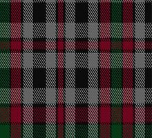 01712 Borthwick Clan/Family Tartan Fabric Print Iphone Case by Detnecs2013