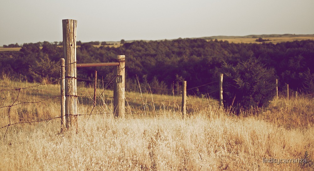 A Fence in the Country by lindsycarranza