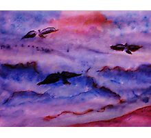 Seagulls fight the waves for fish, watercolor Photographic Print