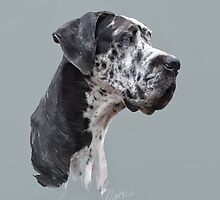 Great Dane by Marsea