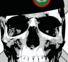 Air Force TACP Skull Sticker