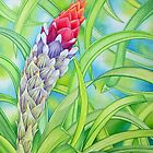 Tropical Bromeliad by joeyartist