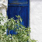 Blue Door With Contrasts by Francis Drake