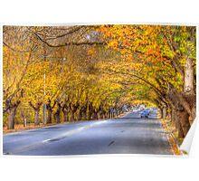 Hahndorf II, Adelaide Hills SA Poster