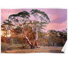 Nairne, Adelaide Hills SA Poster