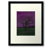 Color Tree Framed Print