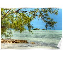 Paradise on Earth at Coral Harbour in Nassau, The Bahamas Poster