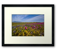 Spring Bouquet at Warner Springs Framed Print