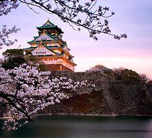 Nightfall at Osaka Castle by mikeofthethomas