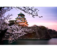 Nightfall at Osaka Castle Photographic Print