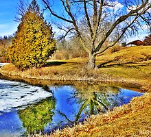 Carlin Weld Park In Early April by EBArt