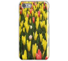 Red and Yellow Tulip iPhone Case iPhone Case/Skin
