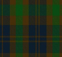 01739 Bright of Garth Tartan Fabric Print Iphone Case by Detnecs2013