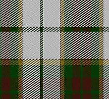 01749 British Columbia #2 Fashion Tartan Fabric Print Iphone Case by Detnecs2013