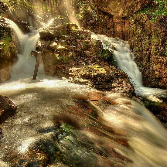Morning light, Nigothoruk Creek by Kevin McGennan