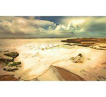 algae foam Photographic Print