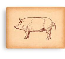 Butcher's Pig line illustration Canvas Print