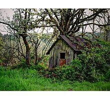 Just An Old Shack Photographic Print