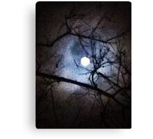 The Full Moon Between Branches Canvas Print